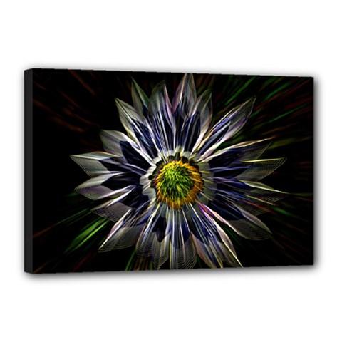Flower Structure Photo Montage Canvas 18  x 12