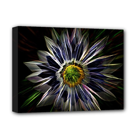 Flower Structure Photo Montage Deluxe Canvas 16  X 12