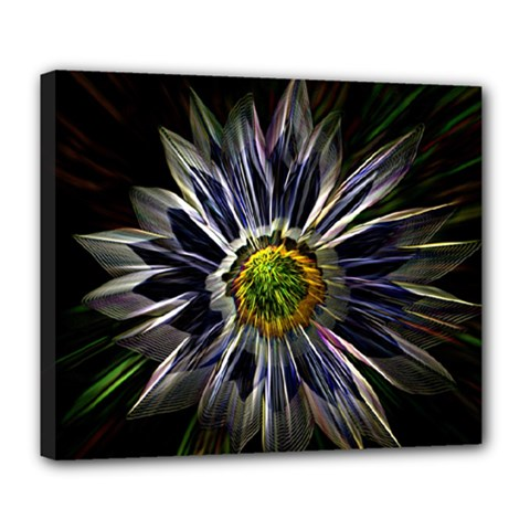 Flower Structure Photo Montage Deluxe Canvas 24  x 20