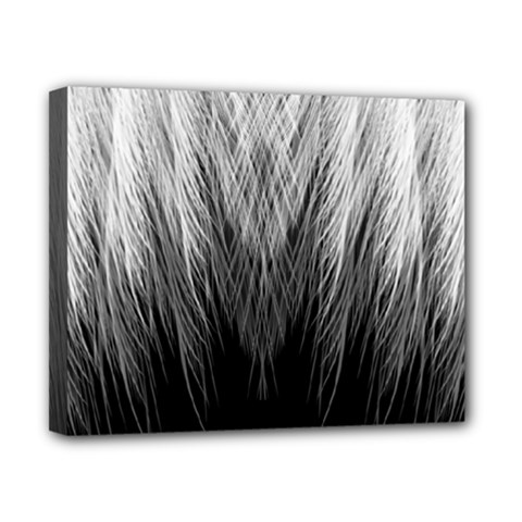 Feather Graphic Design Background Canvas 10  x 8