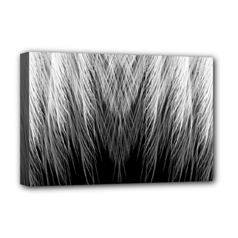 Feather Graphic Design Background Deluxe Canvas 18  x 12