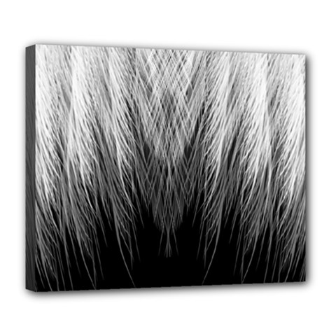 Feather Graphic Design Background Deluxe Canvas 24  x 20