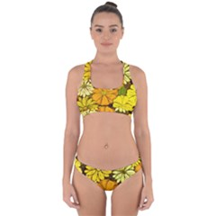Abstract #417 Cross Back Hipster Bikini Set