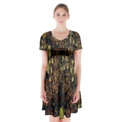 Wallpaper With Fractal Small Flowers Short Sleeve V Neck Flare Dress