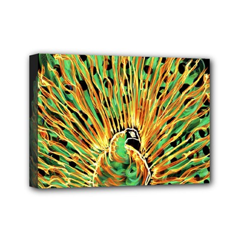 Unusual Peacock Drawn With Flame Lines Mini Canvas 7  X 5