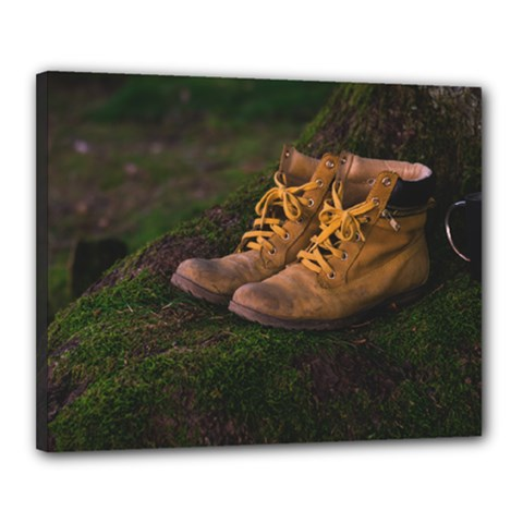 Hiking Boots Canvas 20  x 16