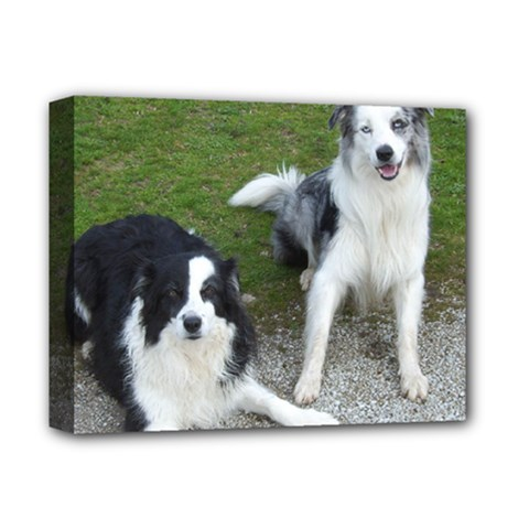 2 Border Collies Deluxe Canvas 14  x 11