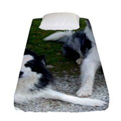 2 Border Collies Fitted Sheet (Single Size)