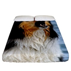 Black Tri Border Collie Wet Fitted Sheet (King Size)