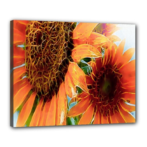 Sunflower Art  Artistic Effect Background Canvas 20  X 16