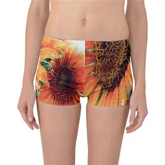 Sunflower Art  Artistic Effect Background Reversible Boyleg Bikini Bottoms
