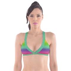 Metallic Rainbow Glitter Texture Plunge Bikini Top