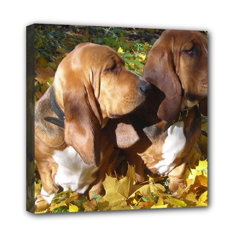 2 Bassets Mini Canvas 8  x 8
