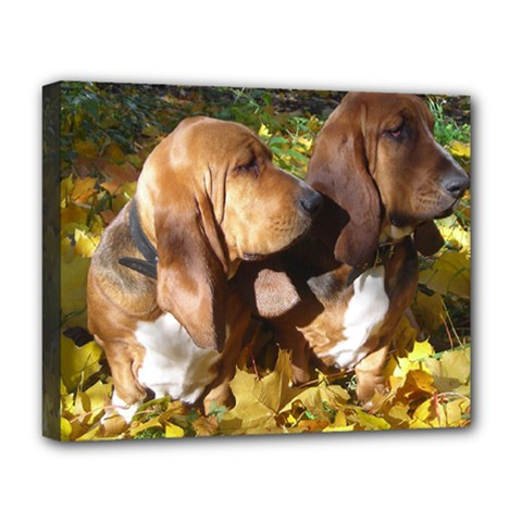 2 Bassets Deluxe Canvas 20  x 16