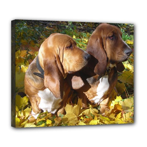 2 Bassets Deluxe Canvas 24  x 20