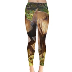 2 Bassets Leggings