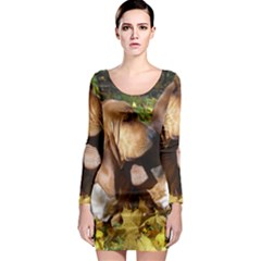 2 Bassets Long Sleeve Bodycon Dress