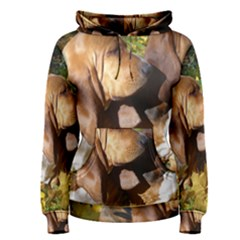 2 Bassets Women s Pullover Hoodie