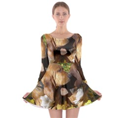2 Bassets Long Sleeve Skater Dress