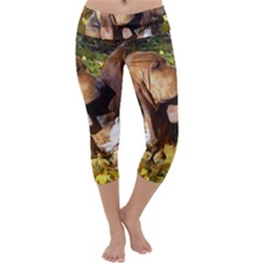 2 Bassets Capri Yoga Leggings