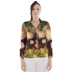 2 Bassets Wind Breaker (Women)