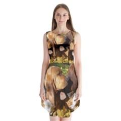 2 Bassets Sleeveless Chiffon Dress
