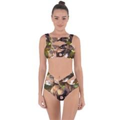 2 Bassets Bandaged Up Bikini Set