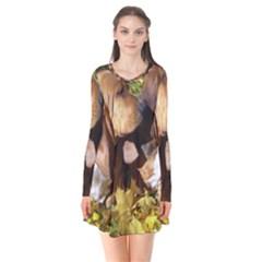 2 Bassets Flare Dress