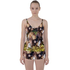 2 Bassets Tie Front Two Piece Tankini