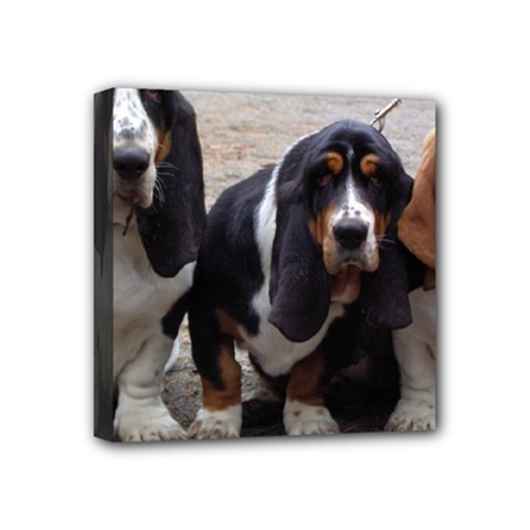 3 Basset Hound Puppies Mini Canvas 4  x 4