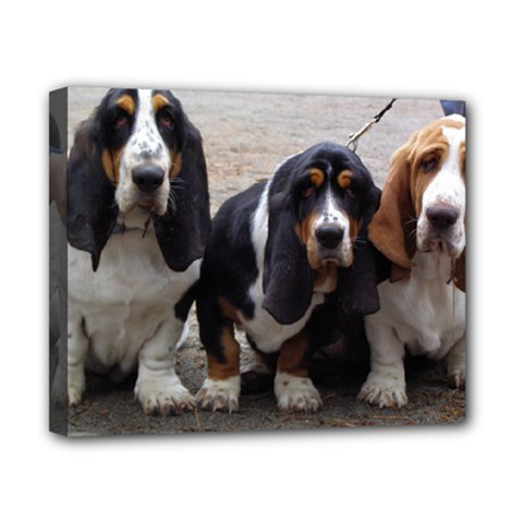 3 Basset Hound Puppies Canvas 10  x 8