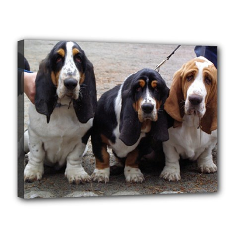 3 Basset Hound Puppies Canvas 16  x 12