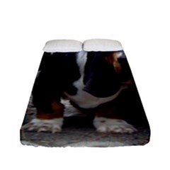 3 Basset Hound Puppies Fitted Sheet (Full/ Double Size)