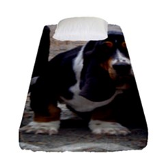 3 Basset Hound Puppies Fitted Sheet (Single Size)