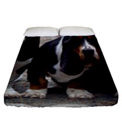 3 Basset Hound Puppies Fitted Sheet (Queen Size)