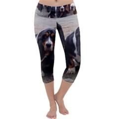 3 Basset Hound Puppies Capri Yoga Leggings