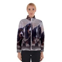 3 Basset Hound Puppies Winterwear