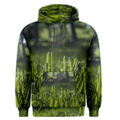 Green Grass Field Men s Pullover Hoodie