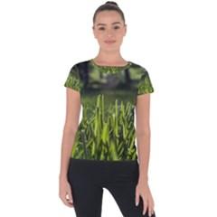 Green Grass Field Short Sleeve Sports Top