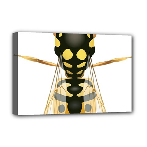 Wasp Deluxe Canvas 18  X 12