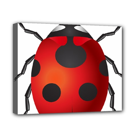 Ladybug Insects Canvas 10  X 8