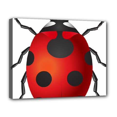 Ladybug Insects Canvas 14  X 11