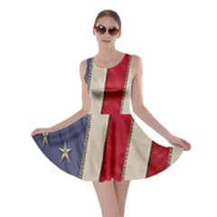 Usa Flag Skater Dress