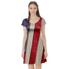 Usa Flag Short Sleeve Skater Dress