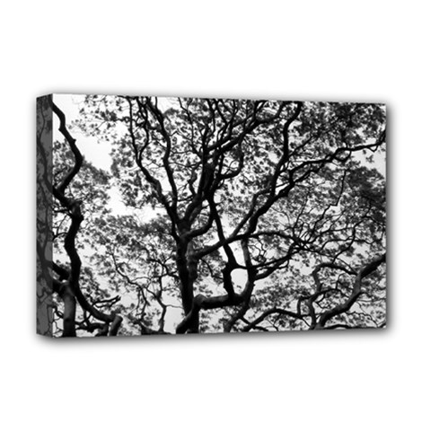 Tree Fractal Deluxe Canvas 18  X 12