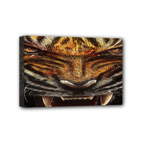 Tiger Face Mini Canvas 6  X 4
