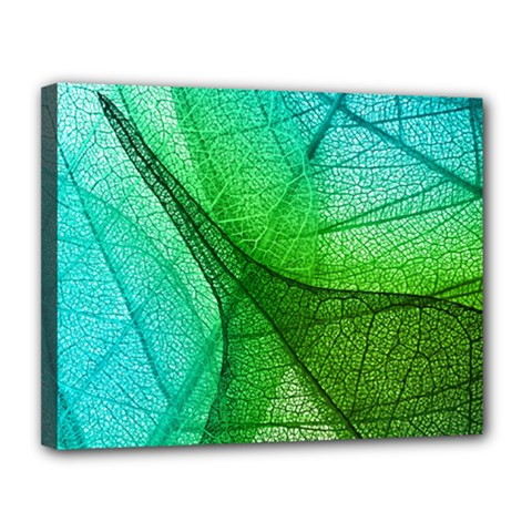 Sunlight Filtering Through Transparent Leaves Green Blue Canvas 14  X 11