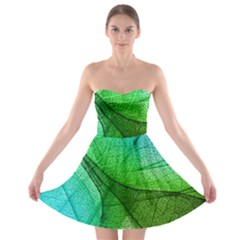 Sunlight Filtering Through Transparent Leaves Green Blue Strapless Bra Top Dress