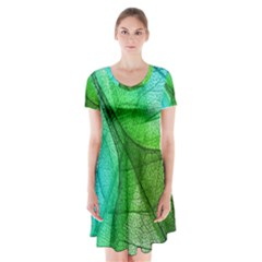 Sunlight Filtering Through Transparent Leaves Green Blue Short Sleeve V Neck Flare Dress