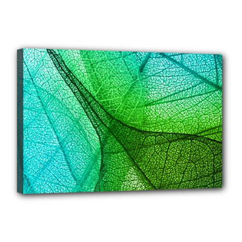 Sunlight Filtering Through Transparent Leaves Green Blue Canvas 18  X 12